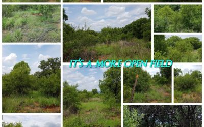 "Landscape collage of a paintball field called ""Bush 2"", captioned on the collage are key points and advantages of the paintball field."